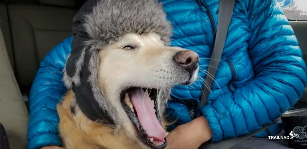 Pilot Tsali yawning