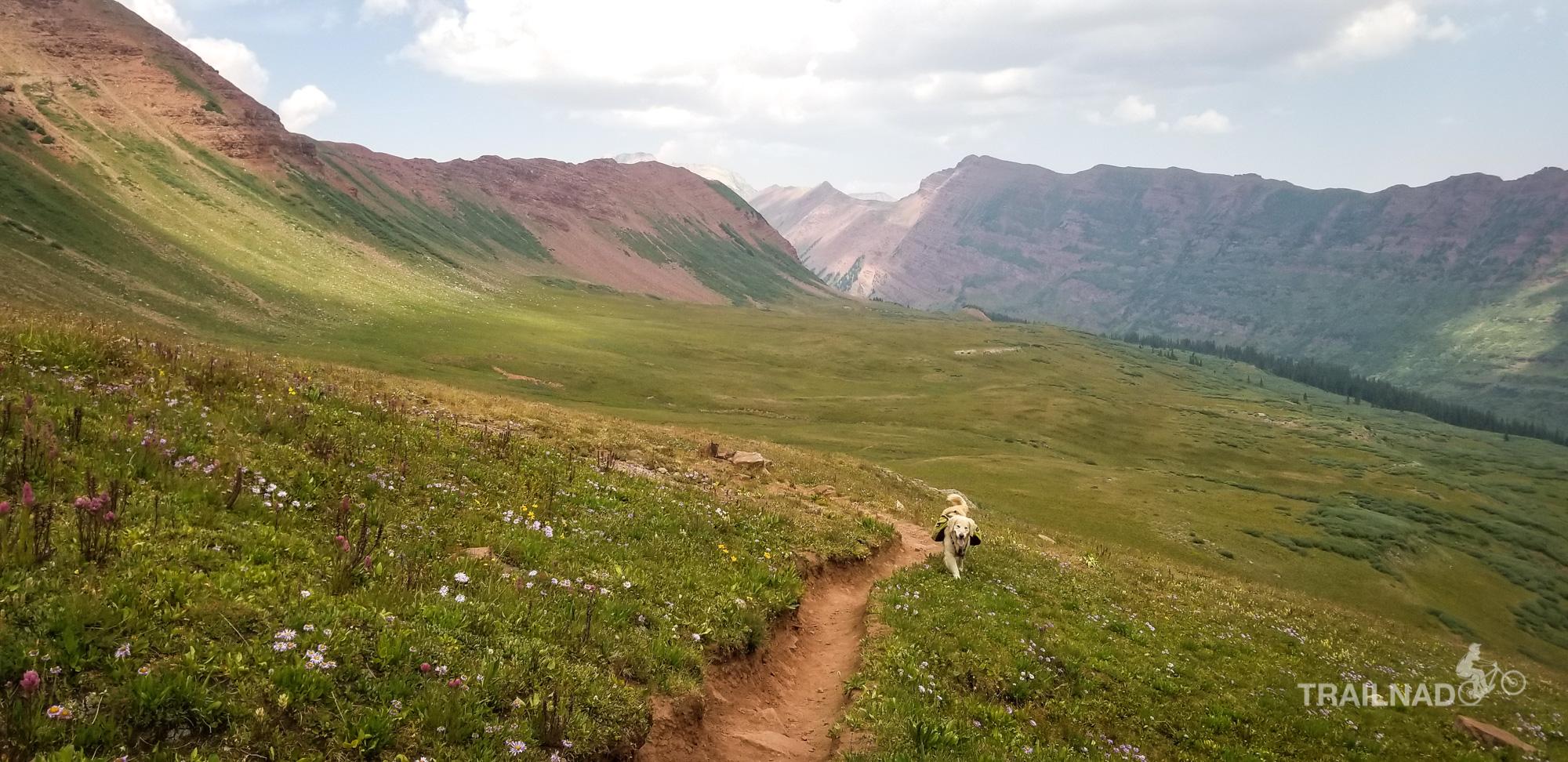 Tsali on Fravert Basin Trail