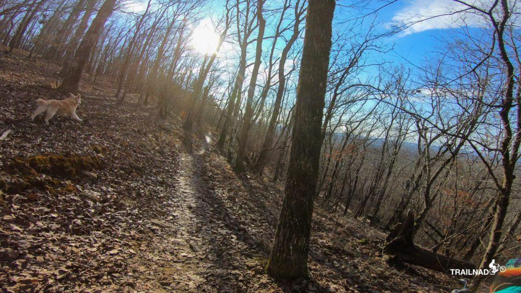 Tsali on Thunder Trail