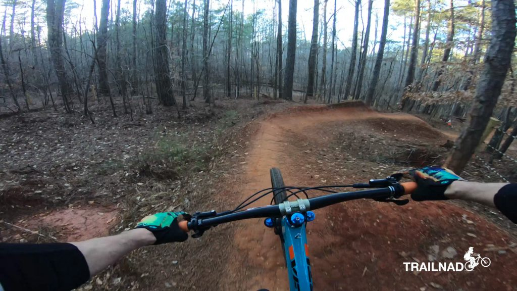 The Holler Berms