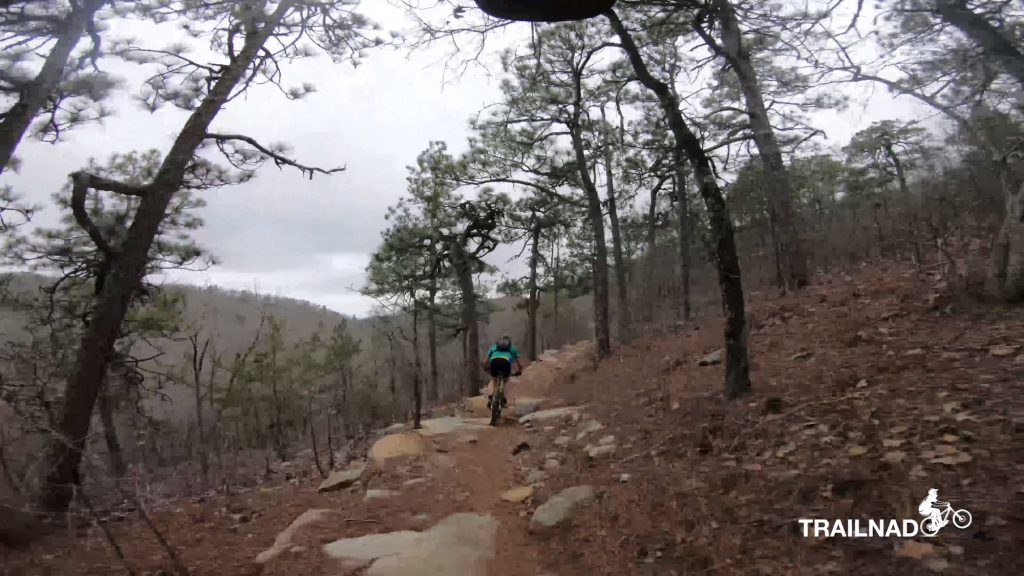 Chilhowee Trail
