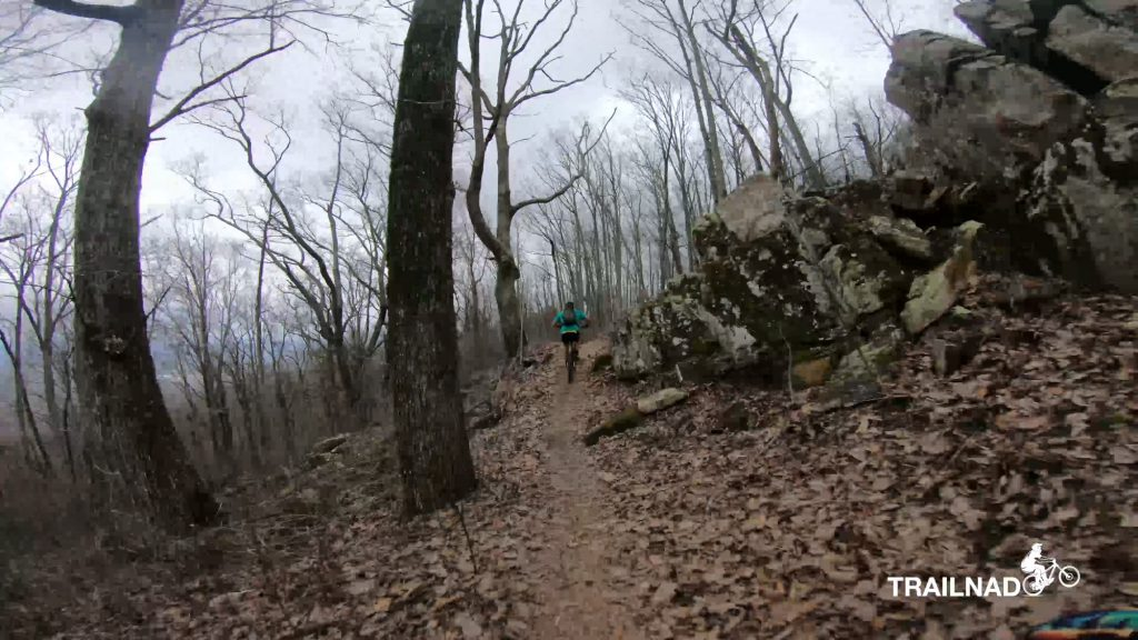 Telladega Trail
